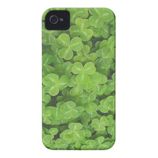 Shamrock Fields Blackberry Bold Barely There Case iPhone 4 Cases