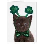 Shamrock Kitten Card
