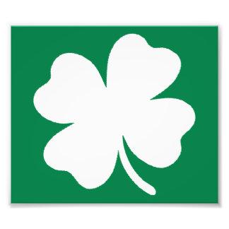 Shamrock  St Patricks Day Ireland Photo Print