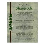 Shamrocks Post Card