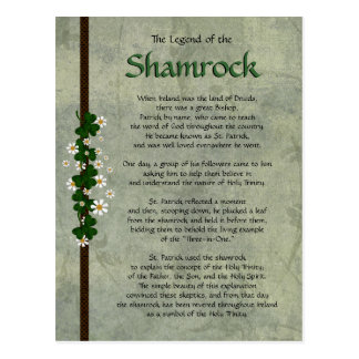 Shamrocks Postcard