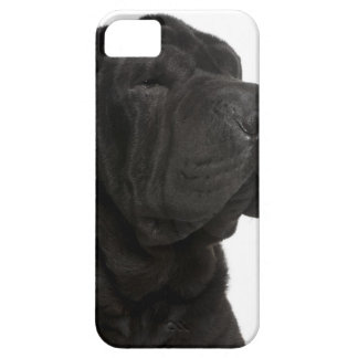 Shar Pei (1 year old) close-up Case For The iPhone 5