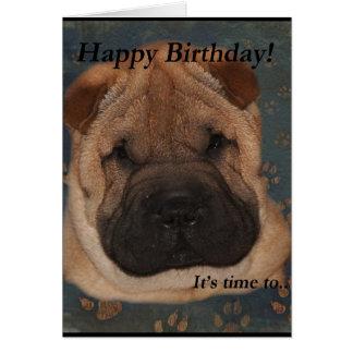 Shar Pei Birthday-Take Paws Greeting Card