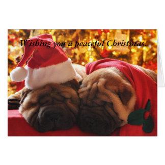 Shar Pei Peaceful Christmas Greeting Card