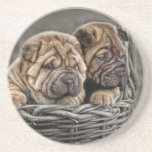Shar-pei Puppies in Basket Coaster