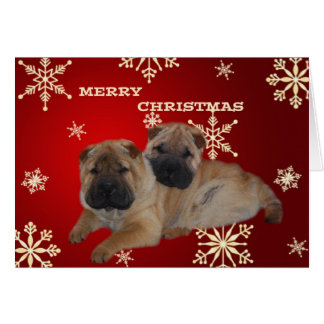 Shar Pei Puppies Snowflake card