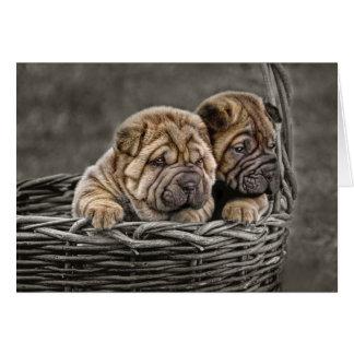 Shar-Pei Pups in Basket Greeting Card