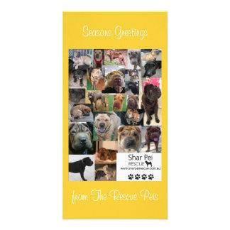 Shar Pei Rescue Xmas Card