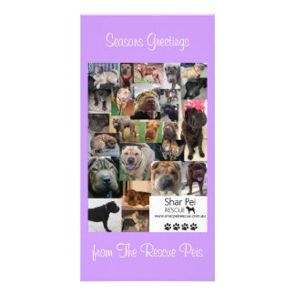Shar Pei Rescue Xmas Card Personalised Photo Card