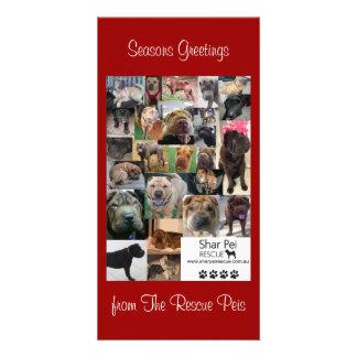 Shar Pei Rescue Xmas Card Personalised Photo Card