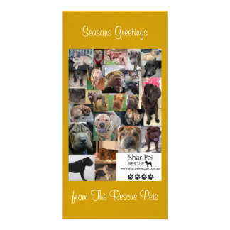 Shar Pei Rescue Xmas Card Personalized Photo Card