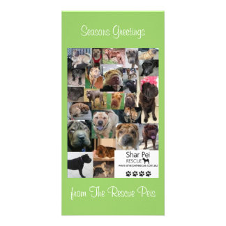 Shar Pei Rescue Xmas Card Picture Card