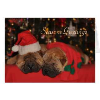 Shar Pei Sleepy Christmas card
