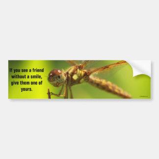 Share a smile bumper sticker