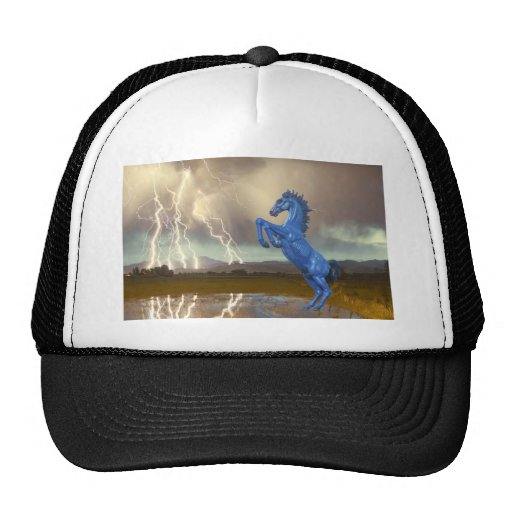 Share Favorite DIA Mustang Bronco Lightning Stor Hats