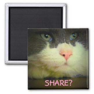Share with kitty? square magnet
