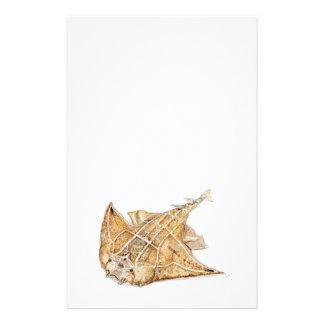Shark angel, angelote stationery