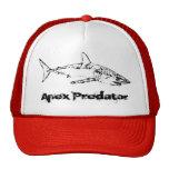Shark Apex Predator