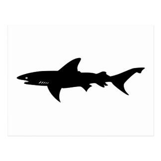 Shark Attack - Diving with Sharks Elegant Black Postcard