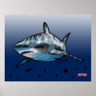Shark Attack! Poster