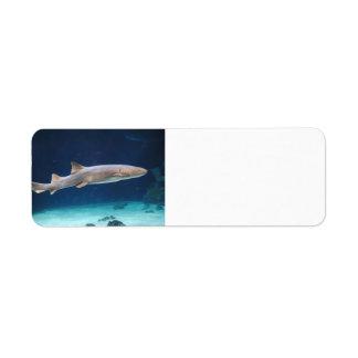 Shark Avery Label Return Address Label