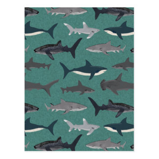Shark Boys Green Ocean Animals / Andrea Lauren Postcard
