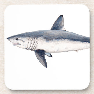 Shark cailon coaster