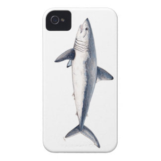 Shark cailon iPhone 4 cover