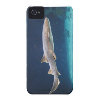 Shark Case-Mate Case iPhone 4 Cases
