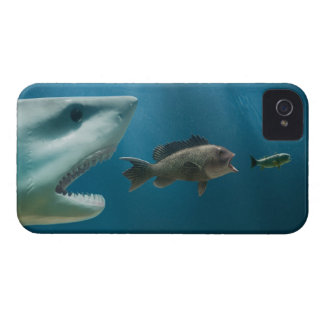 Shark chasing sea bass chasing juvenile iPhone 4 case