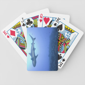 Shark in ocean, low angle view bicycle playing cards