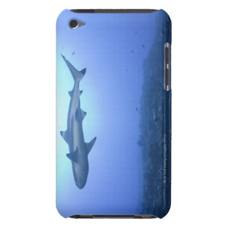 Shark in ocean, low angle view iPod touch Case-Mate case