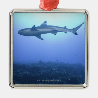 Shark in ocean, low angle view christmas ornament