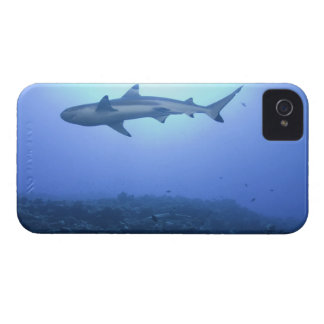Shark in ocean, low angle view iPhone 4 covers