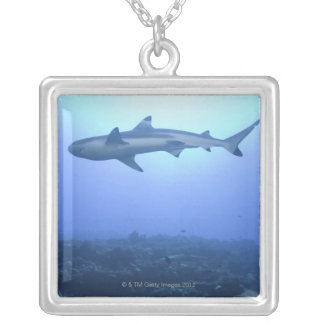 Shark in ocean, low angle view silver plated necklace