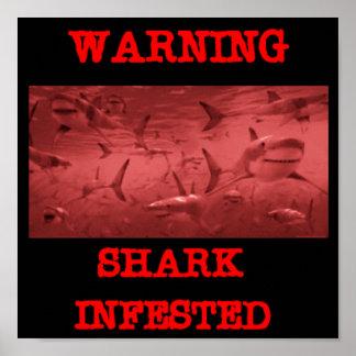 SHARK INFESTED POSTER