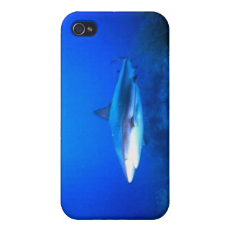 Shark Iphone 4 Cases