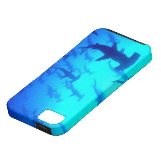 Shark Iphone 5S Case iPhone 5 Case