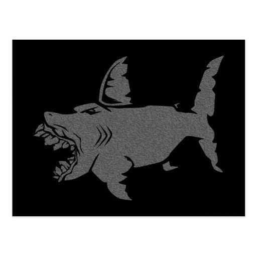 Shark Post Card