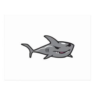 SHARK POSTCARD