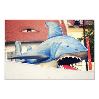 Shark puppet photo print