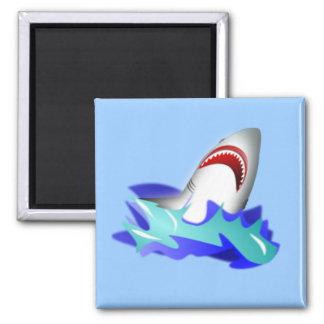Shark Rise Magnet