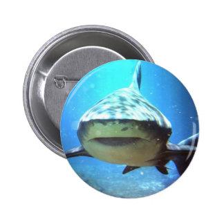 Shark Round Pin