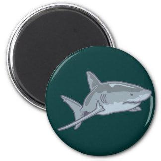 Shark shark magnet