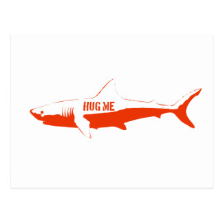 Shark, so hug me! postcard
