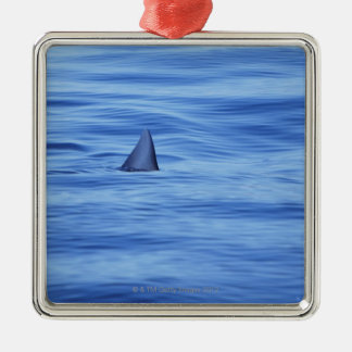 Shark swimming in ocean water Silver-Colored square decoration
