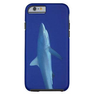 Shark Tough iPhone 6 Case