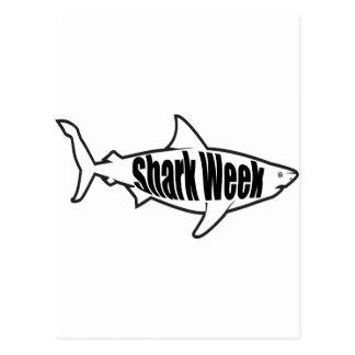Shark Week Postcard