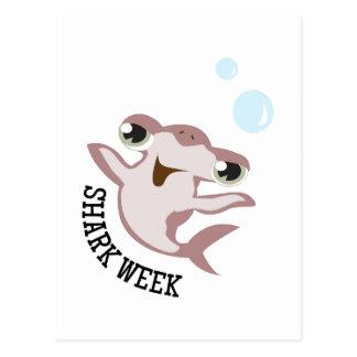 Shark Week Postcards