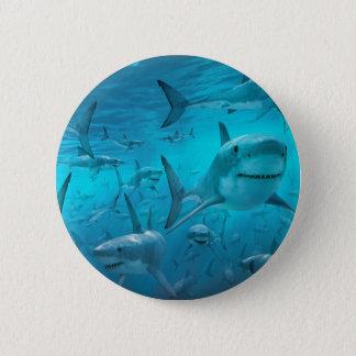 Sharks 6 Cm Round Badge